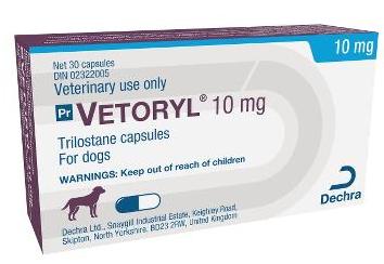 L'utilisation d'anipryl et de lysodren pour les chiens 9